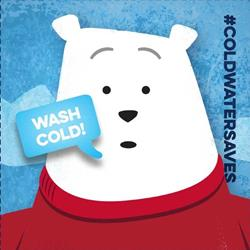 Image result for wash clothes with cold water polar bear