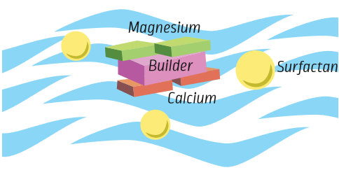 Builders attract magnesium and calcium