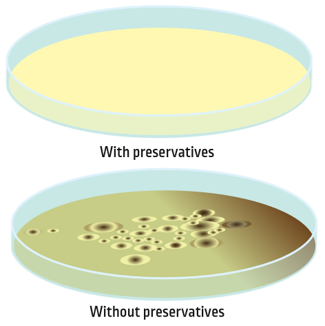 Petri dishes with and without preservatives